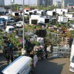 Market with plants and flowers, view from above