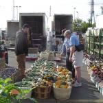 people looking at bushells of produce