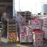 two menu by truck with boxes of fruit