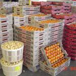 boxes and bushels of potatoes and tomatoes